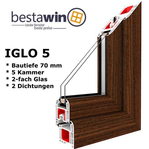 BestaWin Iglo 5